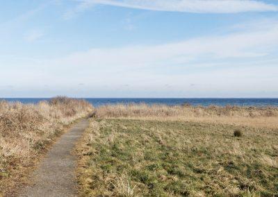 Vinkelbæk, 10km, uden møller